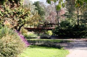 marin_art_garden_1